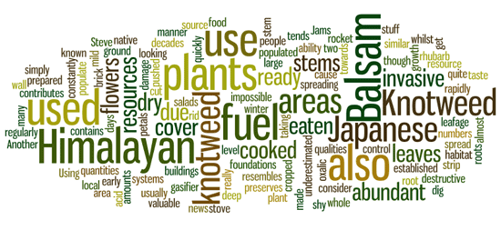 invasive-plants-wordle