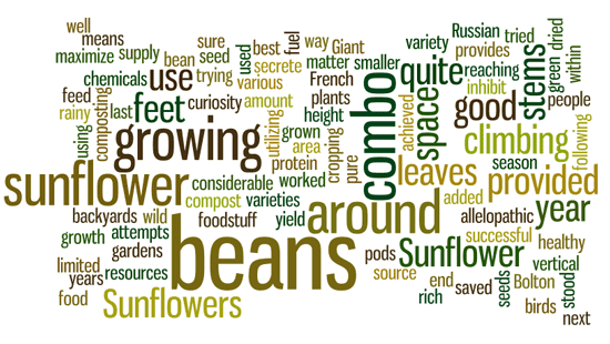 vertical-gardening-wordle