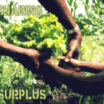 Sharing your surplus to create abundance
