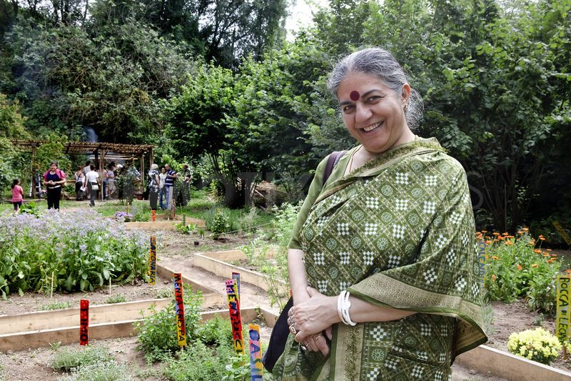Film: George Mckay on radical gardening, Vandana Shiva and others discuss the importance of gardening, seeds and capitalism