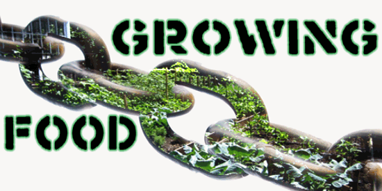 growing-food-links