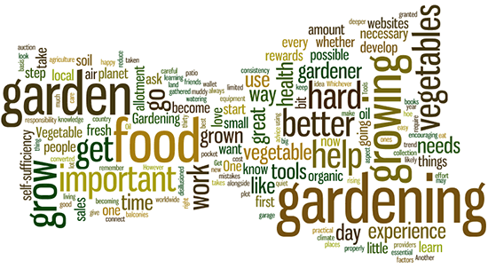 A few tips to help you start a vegetable garden Permanent