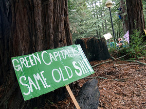 No place for capitalism in ecology movement