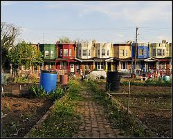 The Community Garden Movement in Philadelphia