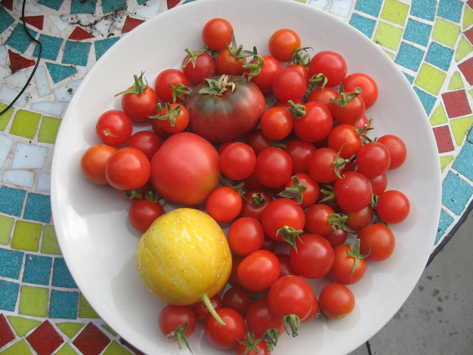 Bolton Urban Growers series – Community Food Growing