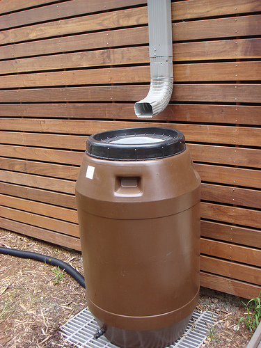 A Gift From Above: Rainwater harvesting for Green Irrigation