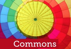 Book: Commons a model for managing natural resources