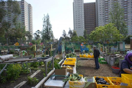Urban Permaculture: creating resilient small scale Cities for the future